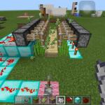 マイクラPE!サトウキビの自動収穫をしよう!
