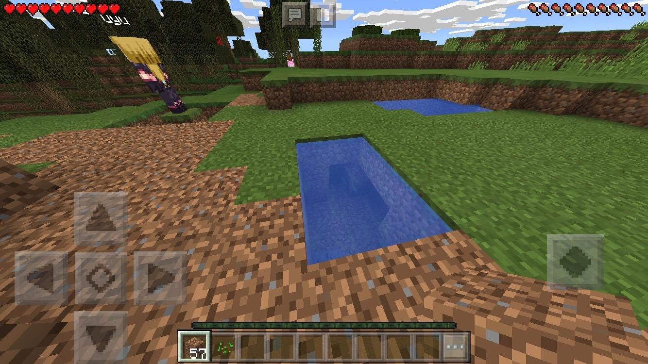 マイクラPEの池