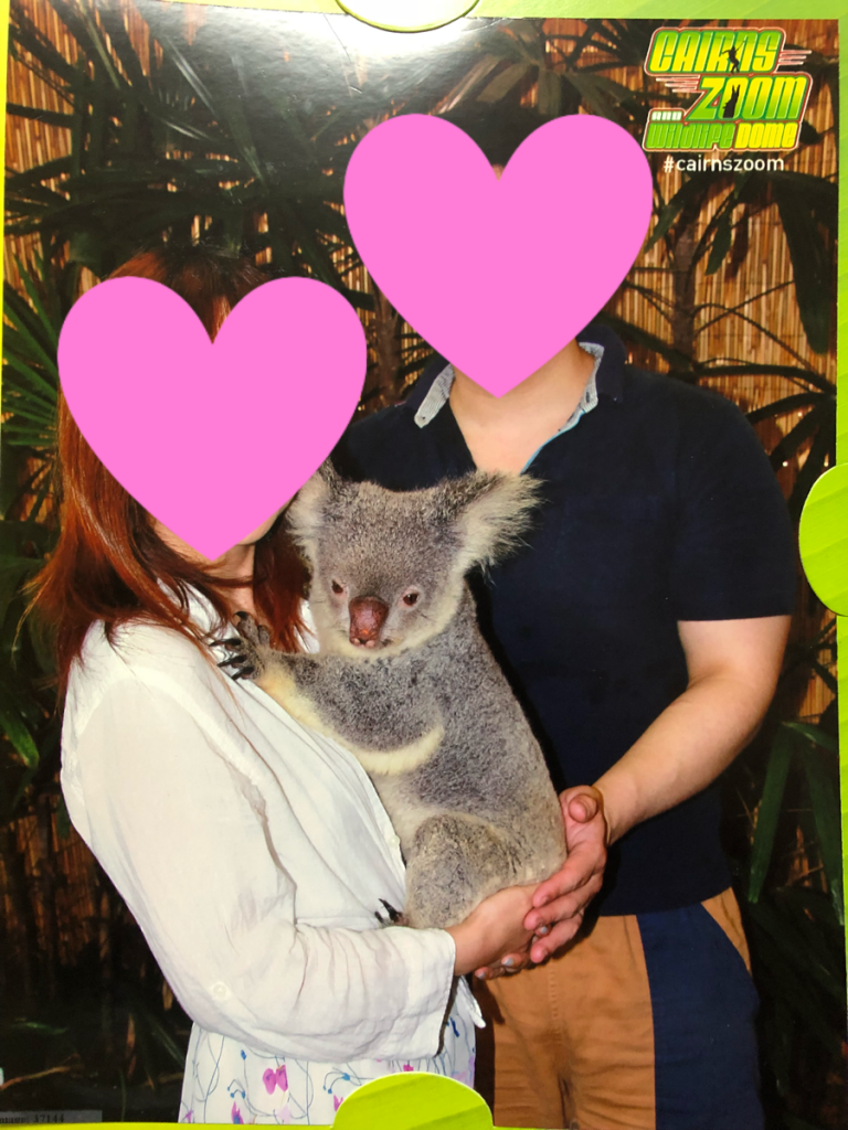 ケアンズのコアラ抱っこ