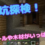【統合版マイクラ】廃坑を発見!手に入るものや下準備!#16